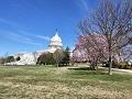 Capitol 2 v
