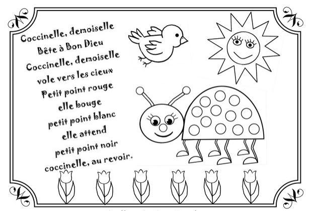 coccinelle-demoiselle
