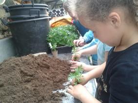 Le travail du jardinier ecole primaire publique d for Jardinier paysagiste reims
