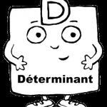 determinant_nb