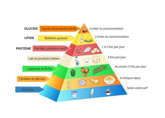 Populaire pyramide alimentaire « Ecole primaire publique LA VEUVE NU97