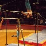acrobatesDSCN0302